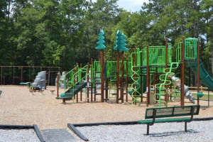 oak-mountain-playground.jpg - Revivify Manor Park! Phase 1