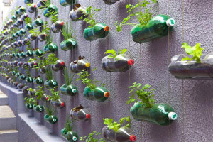 plastic-bottles-recycling-ideas-11.jpg - Litter-free Home with Creative-Recycling