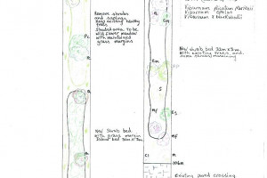 cherry-walk-page-2-of-2-page-001.jpg - Creating a Cherry Tree Walk @ West Acton