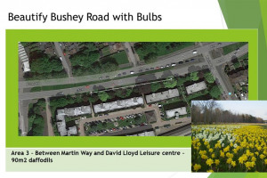 slide-3.jpg - Beautify Bushey Road with Bulbs