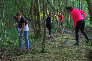 goodgym-rake.jpg - Revivify Manor Park! Phase 1