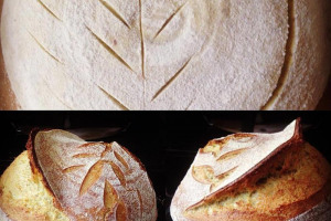 sourdough.jpg - Go Sourdough - Mindful Baking