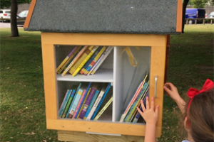 Free Little Library Project, Worthing