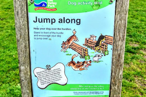 jump-along-2-jpg.jpg - Dogs Improve Wellbeing