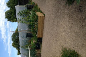 goodpaths-2.jpg - Safe paths for Clapham community garden