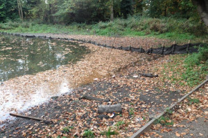 silt-at-outlet.jpg - Oakwood Pond Restoration