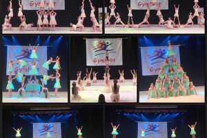 gymfest.jpg - Gymnasts of the future