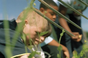 KIDS_2.JPG.jpg - Grow and Feast Outdoor Classroom