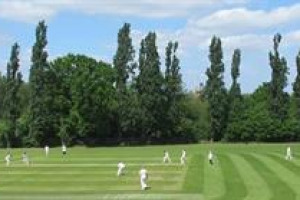 Support Brentham Junior Cricket