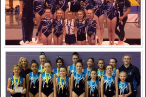 competition-teams.jpg - Gymnasts of the future