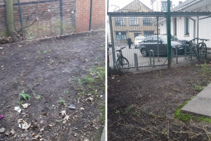 picture-2.png - Community Garden based in a GP surgery