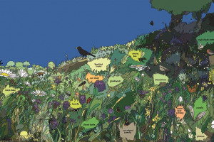b-3-meadow-ecosystem-final.jpg - Help reopen Camley Street Natural Park