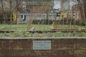 community-gardens.png - Bethnal Green Appeal