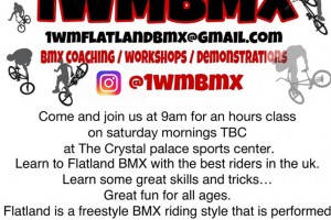 1-wm-at-palace.jpg - Flatland Bmx school