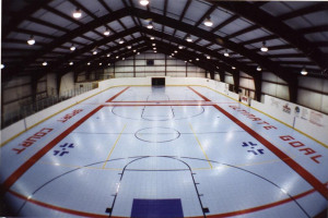 hockey rink-NY100.jpg - Minority Sports Initiative