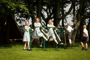 double-air-walker.jpg - Langley Green Primary School Outdoor Gym