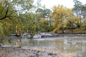 harlow-2.jpg - Oakwood Pond Restoration