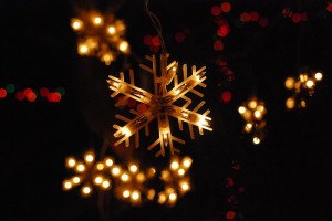 lights-2.jpg - Light Up Acomb This Christmas