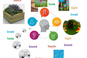 5-senses.jpg - Barnet's First Multi-Sensory Playground