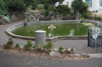New Wildlife Pond