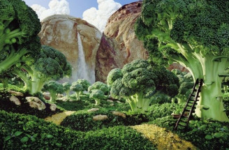 Edible Landscapes