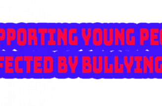 The SAB anti bullying Project