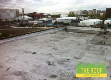 THE ROOF1.jpg