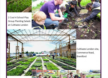 Cultivate London Photo Montage.jpg