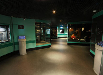 artifacts-gallery-pre-flood.jpg