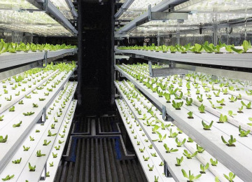 3063275-poster-p-1-take-a-3-d-tour-of-a-vertical-farm-packed-inside-a-shipping-container.jpg
