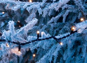 lights-3.jpg