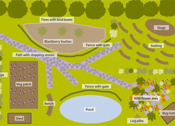 the-mandeville-school-garden-winning-design.jpg