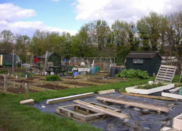 allotments-3-email.jpg