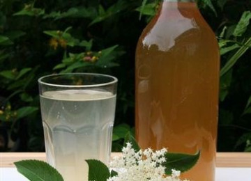 elderflower-cordial.jpg