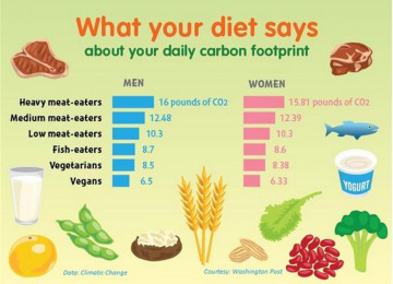 carbon-footprint-graph.jpg