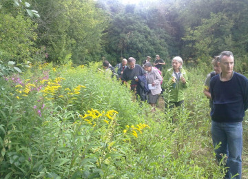 One of the field meetings, led by Naturalist Fiona Barclay, investigates Bumble Bees.jpg