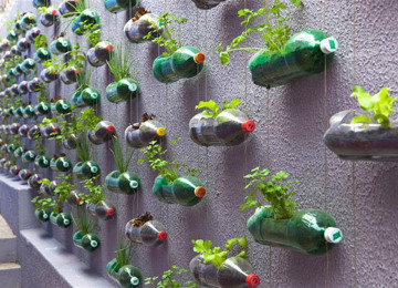 plastic-bottles-recycling-ideas-11.jpg