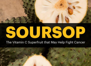 soursop-article-meme.jpg