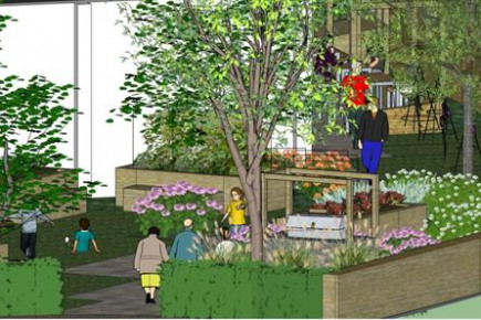Project Image for Mill Hill East Community Garden