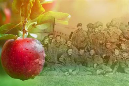 Project Image for Heroes Commemorative Orchard