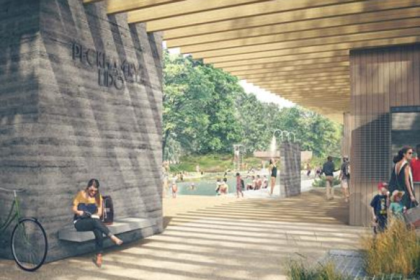 Project Image for Peckham Lido