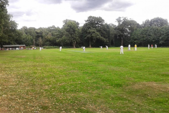 Byron Abbey return to cricket