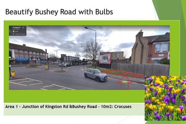 Beautify Bushey Road with Bulbs
