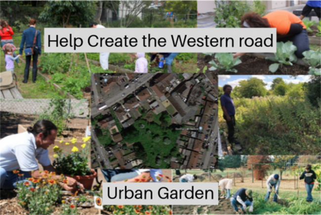 Western Road Urban Garden project