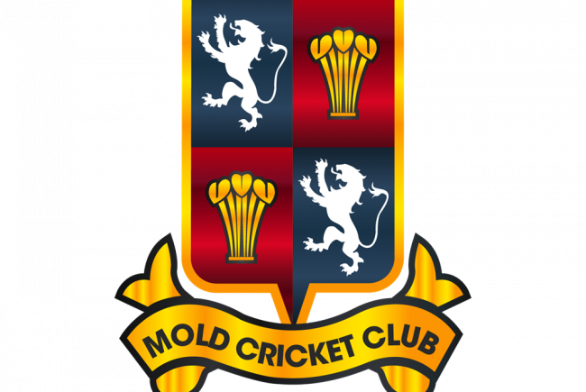 Raising Funds for Mold Cricket Club