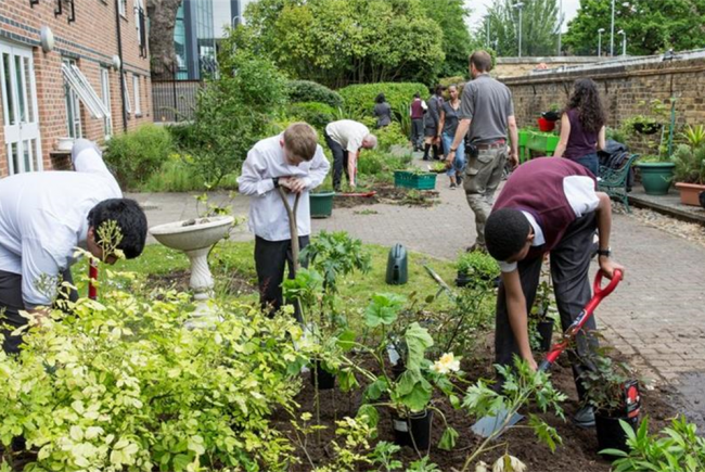 Elgin Intergenerational Garden Project