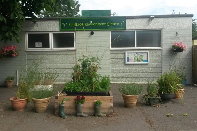 Growing a community and wellbeing garden