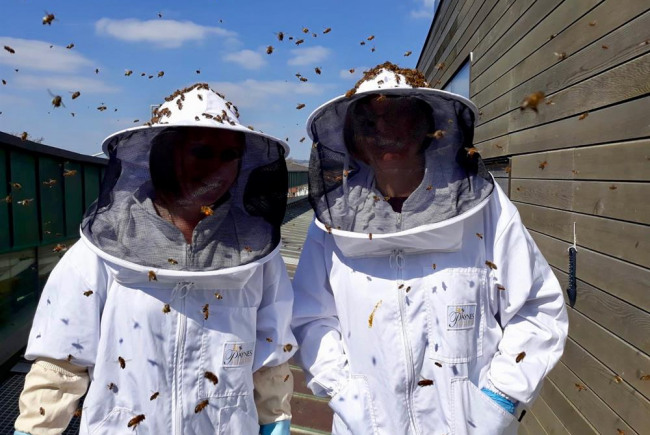 Worthing Honey Collective