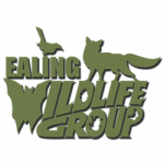 Ealing Wildlife Group